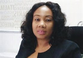 Vapo is a travel technology company – Funmi Ogidan