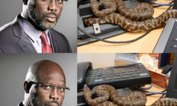 Liberian President,George Weah Vacates Office for Snakes
